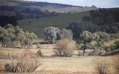 lot 183 Flacknell Creek road, Gunning NSW