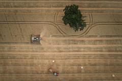 Collection (Photo Lab by Ross Farnham) Tags: harvesting farming farm combine harvester tractor field rossfarnham landscape dji phanton 4 pro aerial top down