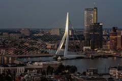 Erasmus bridge, Rotterdam (reinaroundtheglobe) Tags: euromast rotterdam nederland zuidholland highangleview kopvanzuid architecture modernarchitecture erasmusbrug illuminated maas rivier city cityscape kantoren gebouwen