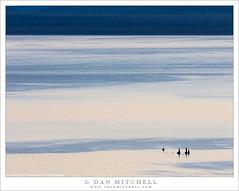 Tufa, Morning Reflections (G Dan Mitchell) Tags: tufa towers morning light patterns surface water mono lake reflect nature landscape california usa north america