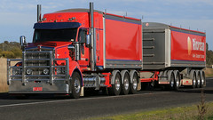 Red/Blue/Red Grain - KENWORTHs (1/3) (Jungle Jack Movements (ferroequinologist)) Tags: kenworth nose red blue grain albury ettamogah hume highway freeway tipper bin annett riordan storage graham lusty trailer hxw hamelex white dump hp horsepower big rig haul haulage freight cabover trucker drive transport carry delivery bulk lorry hgv wagon road semi deliver cargo interstate articulated vehicle load freighter ship move motor engine power teamster truck tractor prime mover diesel injected driver cab cabin loud rumble beast wheel exhaust double b grunt triaxle t heywood lara