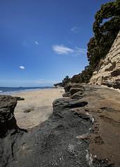 Takapuna's Rock Shelf (fantommst) Tags: lisaridings fantommst takapuna northshore nz newzealand auckland beach rock shelf low tide gulf waitematā harbour