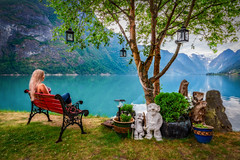 Norway is beautiful (Richard Larssen) Tags: richard richardlarssen norway norge norwegen nature sony scandinavia stryn sonyalpha vestlandet vestland larssen a7riii sel1635gm fe1635gm tree bench girl woman lady olden oldevatnet view sonyfe1635mmf28gm teamsony sogn sognogfjordane fjordane