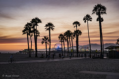 Ferris Wheel @ Santa Monica Pier (bryanasmar) Tags: ferris wheel santa monica pier leica m240 zeiss c sonnar 5015 color ngc csonnart1 550 zeisssonnarzm1 550mm leicam9zeisszeisssonnarzm1 550mmzmzeisssonnarf15portraitpeoplekidschildrenclassiccsonnart1 550sonnardepthoffieldphotoborderbokehsurrealtexturemonochromeserene zm
