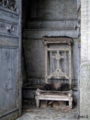... (Jean S..) Tags: cemetery graves mausolée pèrelachaise old ancient