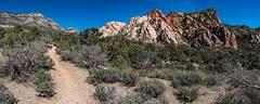 La Madre Spring Loop Trail (karlsjohnson) Tags: conservationarea desert hiking karl lasvegas national nevada nikon redrockcanyon travel unitedstates