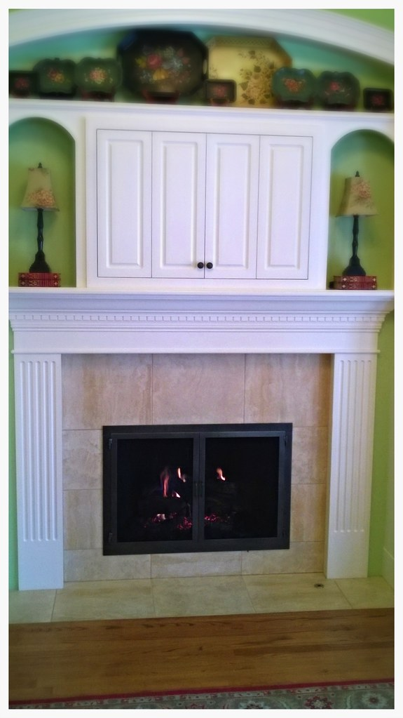 Design Specialties Carolina Screen Fireplace Doors. Chattanooga, Tn.