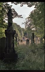 Newington Cemetery (Fraser P) Tags: edinburgh scotland cemetery victorian monuments gravestones headstones gothic morbid melancholy pathos sentiment overgrown hibernian football williegroves
