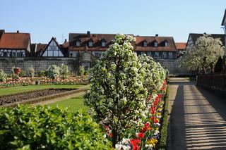 {EXPLORE} Klostergarten Seligenstadt // monastery garden of Seligenstadt in Germany