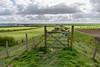 Devils Dyke-0008 (johnboy!) Tags: cambridgeshire devilsdyke earthworksway newmarket reach