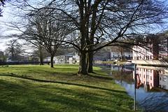 Kind conditions (Phil Gayton) Tags: water grass tree sky landscape vire island river dart totnes devon uk hightide