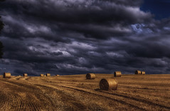 Bales (xDigital-Dreamsx) Tags: landscape nature field farm farmland clouds stormclouds countryside rural weather storm