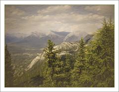 Canadian Rockie's (williamwalton001) Tags: texture trees timber clouds colourimage mountains rocks sky snow