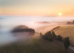otherland (Lena Held) Tags: sonnenaufgang sonne sonnenschein sonnenlicht sunrise sunny sunshine sunbeams newday foggy fog moody mood misty world global nature natur natural landscape drone dronshots dji fly overview trees plants outside outdoor early morning summer oberpfalz bayern deutschland germany bavaria