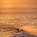 Bells Beach Big Surf-36