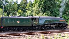60009 Winchfield 26 July 2018 (19) (BaggieWeave) Tags: hampshire winchfield lswr southwestmainline southwestern a4 pacific 462 60009 unionofsouthafrica steamengine steamlocomotive steam steamtrain dorsetcoastexpress