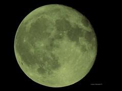 Full Moon (Anton Shomali - Thank you for over 1 million views) Tags: coolpix nikon lunar moon beauty beautiful full fullmoon july 2018 sky dark night month year