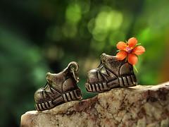 on the edge - Macro Mondays - Trinkets (Luana 0201) Tags: macromondays trinkets rock boots metal bokeh flower