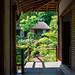 Tojiin temple, Kyoto