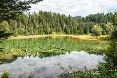Riedener See (stefangruber82) Tags: alpen alps tirol tyrol lake see bergsee mountainlake wood holz baumstämme treetrunks reflection spiegelung