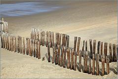 La plage à Dombourg, Walcheren, Zeelande, Nederland (claude lina) Tags: claudelina nederland hollande paysbas zeelande zeeland wood plage strand beach