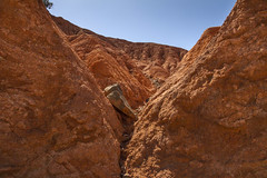IMG_3699 (storvandre) Tags: morocco marocco africa trip storvandre marrakech marrakesh tizintest nfiss valley landscape nature pass mountains atlas atlante