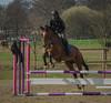 Horse and rider in Hittarp (frankmh) Tags: horse rider jumping hittarp helsingborg skåne sweden sport