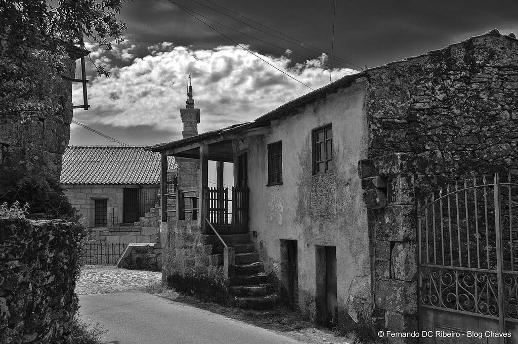 1600-nogueira (258)