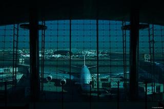 IMGP2316 Airbus A380 Emirates