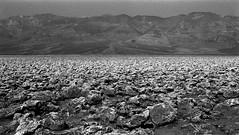 The Devil you say...  (Film) (Harald Philipp) Tags: deathvalley california desert devilsgolfcourse arid dry mountains hot heat bleak ilford delta400 kodakretina retinaiiic schneiderkreuznach germancamera primelens 50mm itsdeadjim