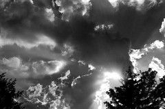 clouds in late afternoon (V-A-B) Tags: film analog blackwhite ilfordfp4 rodinal nikonf3 nikkor50mmf14 clouds