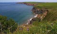 Mussewick Sands - Pembrokeshire (4) (Richard Collier - Wildlife and Travel Photography) Tags: landscape seascape coastal coastalcliffs coastline pembrokeshire mussewicksands wales