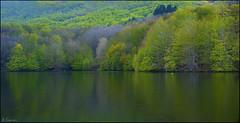 Reflejos (antoniocamero21) Tags: color foto sony paisaje reflejos natural parque montseny barcelona catalunya
