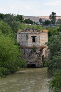 Ruinas en el Guadalquivir (Córdoba, Andalucía, España, 12-6-2018)