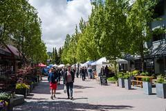 Farmers' Market in Upper Village, Whistler (GSKHK) Tags: externallyprocessed traveltowhistlervancouver2018 whistler britishcolumbia canada ca