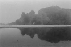20180724-00033.jpg (tristanloper) Tags: tristanloper creativecommons film nikonf6 california bigsur pacificcoast highway1 pacificocean pfeiffer beach fog mist