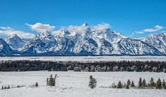 A Memorable Day (TNWA Photography (Debbie Tubridy)) Tags: grandtetonnationalpark wyoming landscapes tetonrange mountains bluesky snow trees winter cold clouds nature habitat environment natural wilderness view vista wild outdoors sunny debbietubridy tnwaphotography