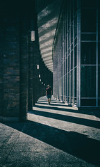 Crosswalk (michael_hamburg69) Tags: hamburg germany deutschland hansestadt lines curves monochrome amalsterfleet ziegel arkadengang säulen brickstones man walk pillar shadow light