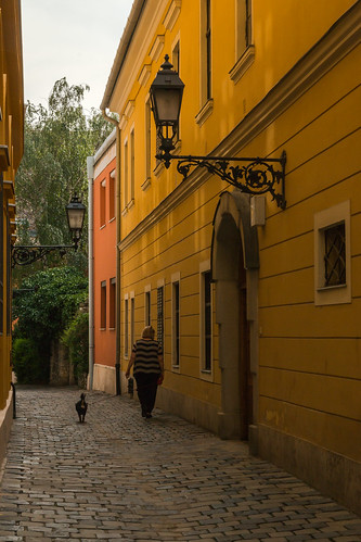 Photo of the day 11/06 Street of the Buda Castle district. Budapest, Hungary