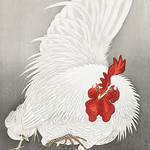 Rooster and three chicks (1900 - 1910) by Ohara Koson (1877-1945). Original from the Rijks Museum. Digitally enhanced by rawpixel. thumbnail