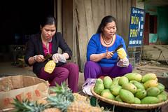 Ananas (Photoauge.) Tags: hàgiang vietnam vnm geo:lat=2262519530 geo:lon=10495629510 geotagged thịtrấnviệtlâm abenteuervietnam