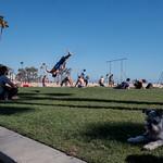 | Santa Monica, CA | 2018 thumbnail