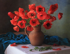 Still life with a bouquet of poppies (Tatyana Skorokhod) Tags: stilllife bouquet flowers poppies onthetable indoors composition decor