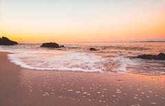 Sunset Dream (Bron.Wolff) Tags: glow goldenhour golden water scenery landscape australia nature rocks sand beach beautiful colours sunset seascape sea