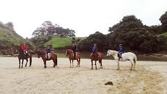 Team Celoriu! Aquí os presentamos a Guille y Claudia profesores del equipo de CA Celorio #cuadraelalisal #clasesequitacion #caballos #horses #horseslovers #horseslife #verano2018 #Asturias #celorio