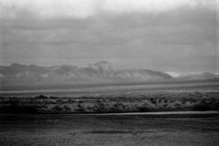Into The Desert Rain