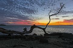 Sunset Beach, Hawaii (Klaus Ficker --Landscape and Nature Photographer--) Tags: sunset sonnenuntergang beach strand evening abendsonne clouds wolken hawaii kona kentuckyphotography klausficker canon eos5dmarkiv usa