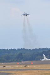 McDonnell-Douglas (EAV-8B 'Harrier II') VA.2 'Matador' II+ (A380spotter) Tags: boeing mcdonnelldouglas eav8b harrierii va2matadorii va1b37 coded01925 25 armadaespañola spanishnavy 9aescuadrillaaeronaves vstol flyingdisplay fia18 farnboroughinternationalairshow2018 taglondonfarnboroughairport eglf fab