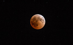 """The longest """"blood moon"""" lunar eclipse of the century tonight (Vagelis Pikoulas) Tags: moon eclipse canon 6d tamron 70200mm vc long exposure night nightscape stars tonight view landscape greece vilia europe july summer 2018"""