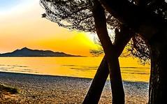 Beauty of Morning (petrk747) Tags: sunset sunrise mallorca alcudia spain sea mediterranean water sun sky heaven nature morning outdoor reflection